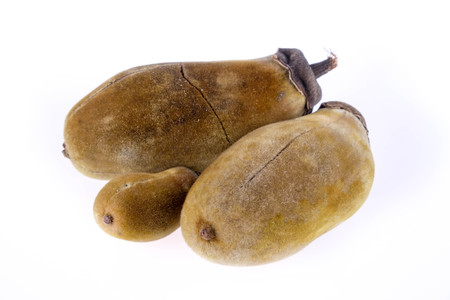digitata: Baobab fruit on a white background