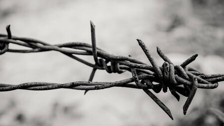 Barbed wire. Barbed wire on fence to feel worrying Concept Banco de Imagens