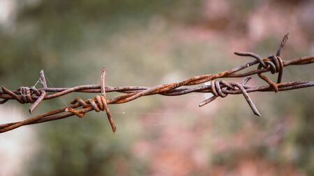 Barbed wire. Barbed wire on fence to feel worrying Concept Zdjęcie Seryjne