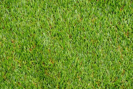 Green plastic grass texture background Banque d'images - 129969864