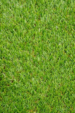 Green plastic grass texture background Banque d'images - 129970287