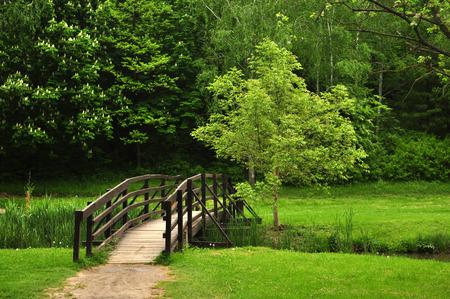 bridge in nature: Romantic bridge in Hungary