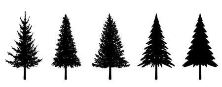 Illustration set of various fir trees (silhouette) Vektoros illusztráció