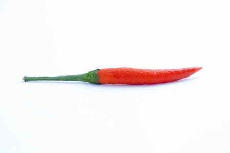 Red chilli on floor white color  photo