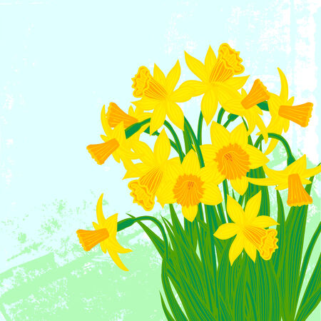 Vector card with daffodils on textured background. Template for Easter promotion, flower shop gift card, soap package, spring sale coupon, perfume box design, Mothers day card, wedding invitation Vector