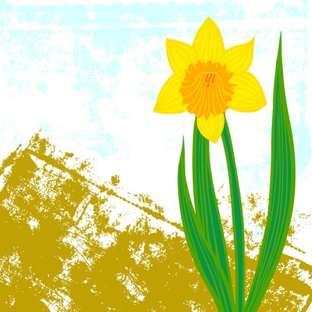 Vector card with daffodil on textured background. Template for Easter promotion, flower shop gift card, thank you note, spring sale coupon, perfume box design, Mother's day card, wedding invitation Vector