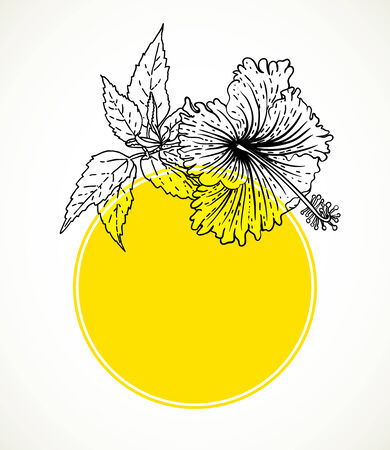 wedding gift: Vector card with hibiscus on yellow circle frame. Template for spa promotion, flower shop gift card, banner, spring sale coupon, perfume box design, herbal tea package, wedding invitation background Illustration