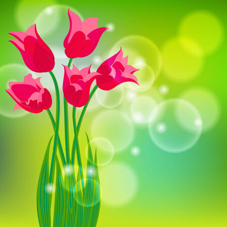 Vector card with red tulips on light green bokeh background. Template for flower shop decor, spring sale coupon, perfume box design, soap package, Mother's day card, wedding invitation, thank you note Illustration