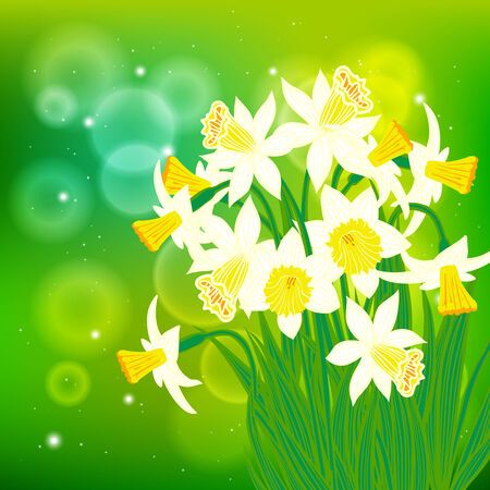 daffodils: Vector card with white daffodils on light bokeh background. Template for Easter promotion, flower shop gift card, spring sale coupon, perfume box design, Mothers day card, wedding invitation