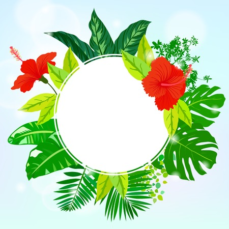 illustration of square card with tropical elements of decor Vector