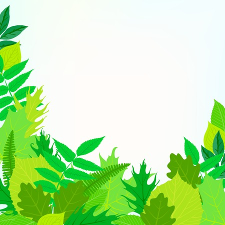 ash tree: Spring card background with green leaves Illustration