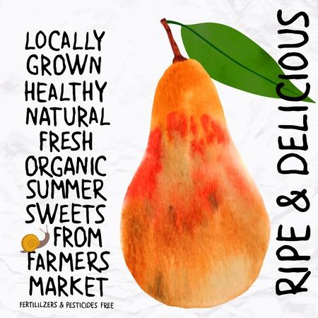 pears: Watercolor pear