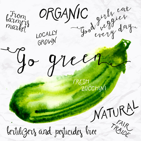 food market: Watercolor zucchini