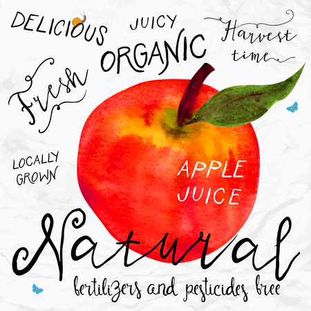 Vector illustration of watercolor red apple, hand drawn in 1950s or 1960s style. Concept for farmers market, organic food, natural product design, soap package, herbal tea, etc. Vettoriali