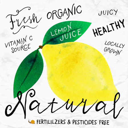 Vector illustration of watercolor lemon, hand drawn in 1950s or 1960s style. Concept for farmers market, organic food, natural product design, soap package, herbal tea, etc. Vectores