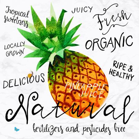 Vector illustratie van aquarel ananas, met de hand getekend in in 1950 of 1960-stijl. Concept voor boerenmarkt, biologische voeding, natuurlijke product design, zeep pakket, kruidenthee, enz. Stock Illustratie