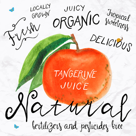 juice: Vector illustration of watercolor tangerine , hand drawn in in 1950s or 1960s style. Concept for farmers market, organic food, natural product design, soap package, herbal tea, etc.