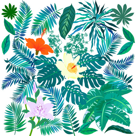 Tropical flowers and plants set 일러스트