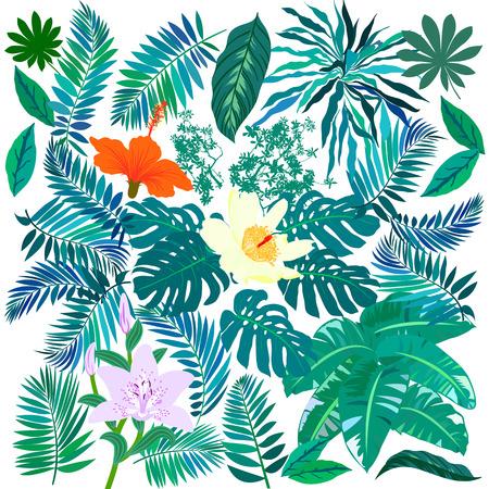Tropical flowers and plants set Illusztráció
