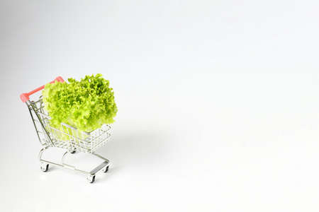 Freshness lettuce green coral salad in mini shopping cart on white gray background and space for text. Idea shopping online. Lettuce is a plant grown as a leaf vegetable, Food and healthy vegetarian. Stockfoto
