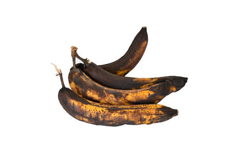 Rotten banana fruit on white background isolated and cliping path Rotten banana with black skin and dark brown and yellow, not fresh .Unhealthy and expired fruite. Stock Photo