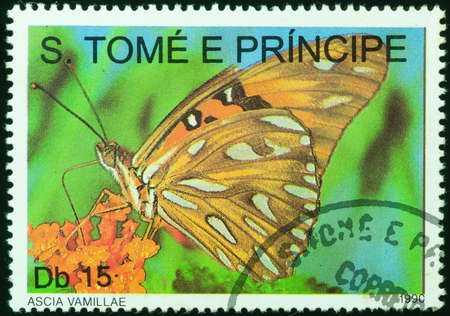 SAO TOME E PRINCIPE - CIRCA 1990  a stamp printed by Sao Tome e Principe, shows yellow butterfly in the island, circa 1990 photo