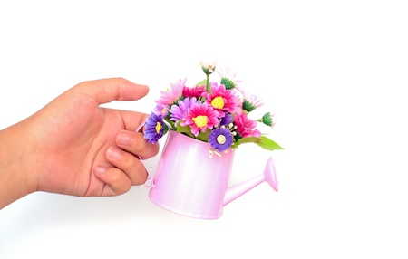 hand holding decorative flower isolated on white photo