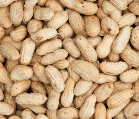 ground nuts: boiled peanuts background, closeup