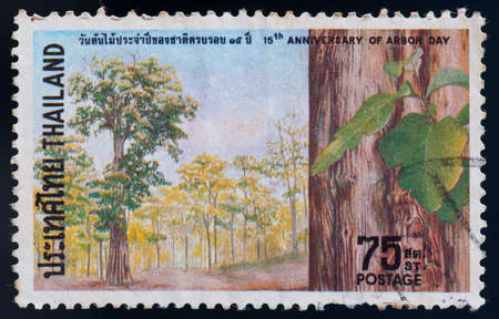 arbor: THAILAND - CIRCA 1974  a stamp printed by Thailand, shows 15th anniversary of arbor day, circa 1974