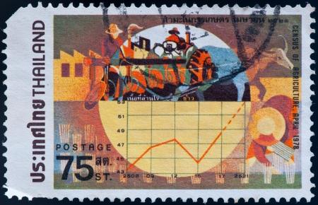 censo: TAILANDIA - CIRCA 1978: un sello impreso por Tailandia, muestra del Censo de la agricultura, alrededor de 1978 Foto de archivo