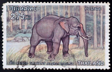 asiatic: THAILAND - CIRCA 1976: a stamp printed by Thailand, shows Asiatic elephant alephas maximus, circa 1976 Stock Photo