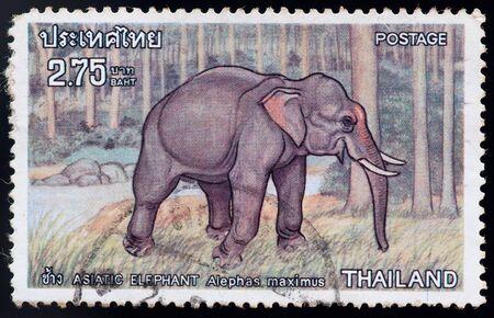 postal stamp: THAILAND - CIRCA 1976: a stamp printed by Thailand, shows Asiatic elephant alephas maximus, circa 1976 Stock Photo