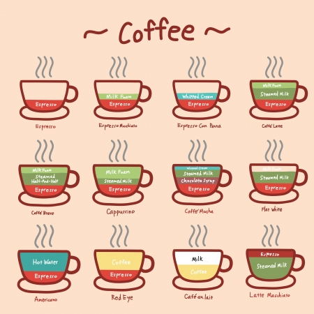 type of coffee doodle, infographic hand drawing  Vector