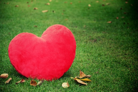 red heart shaped on grass field Stock Photo - 17338175