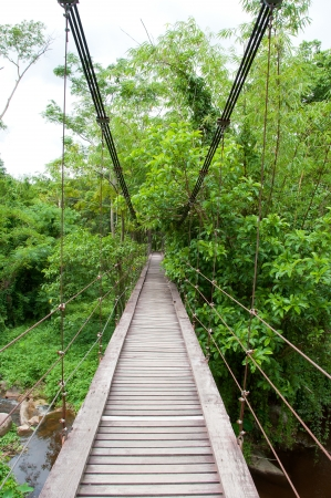 suspension bridge crossing the river photo