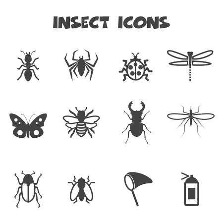 insect icons, mono vector symbols