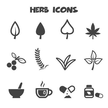 mortero: iconos hierbas