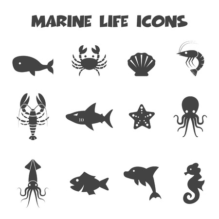 cartoon seahorse: marine life icons, mono vector symbols Illustration
