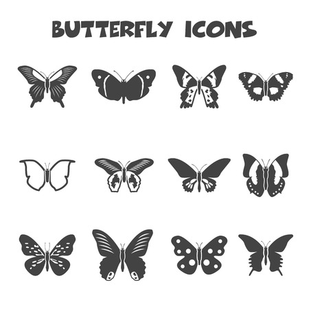 cocoon: butterfly icons, mono vector symbols