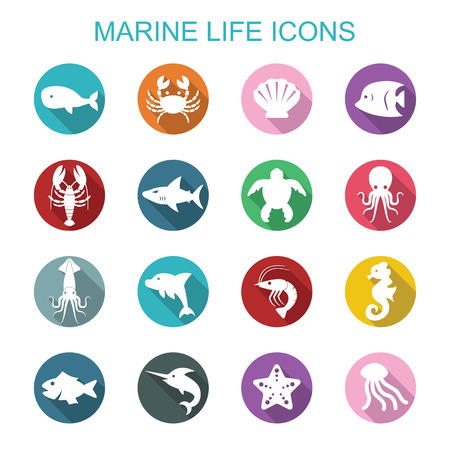 marine life long shadow icons, flat vector symbols