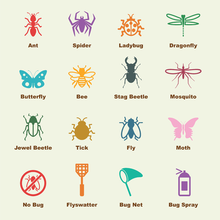 insect elements, vector infographic icons