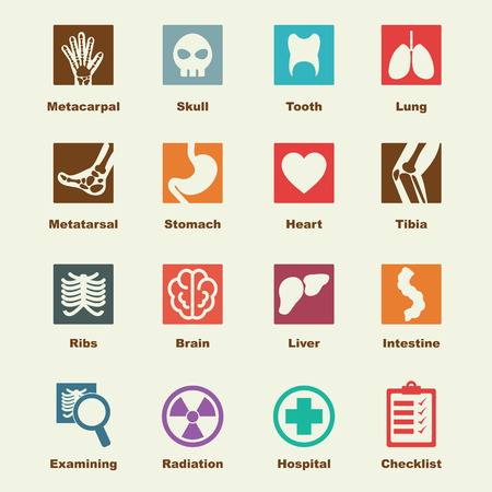 x-ray elements, vector infographic icons Illustration