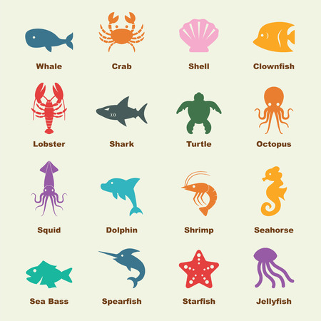 marine life elements, vector infographic icons