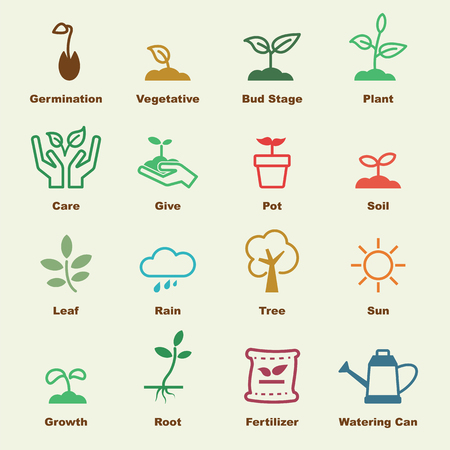 sprouts: sprout elements, vector infographic icons
