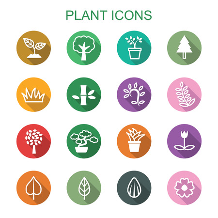 organic plants: plant long shadow icons, flat vector symbols
