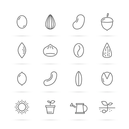 seed and nut vector line icons, minimal pictogram design, editable stroke for any resolution