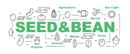 seed and bean vector banner design concept, flat style with icons
