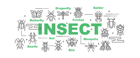 insect vector banner design concept, flat style with icons