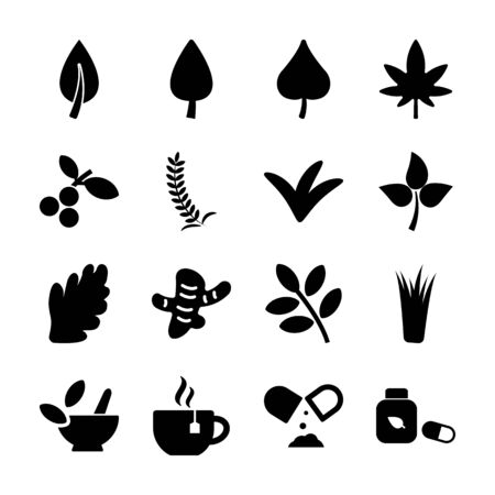 herb solid icons vector design