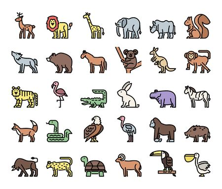 wild animals color outline vector icons safari and jungle concept